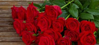 Flor fresca